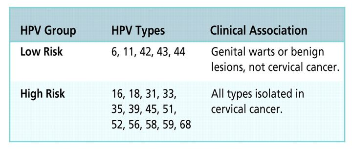 hpv high risk type 18 papillomas signs symptoms