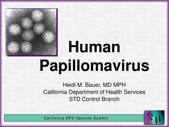human papilloma viruses ppt papilloma definition pathology
