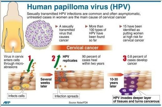 does hpv cause other cancers