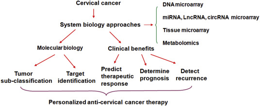 cancer bucal vph cancer la gat chimioterapie