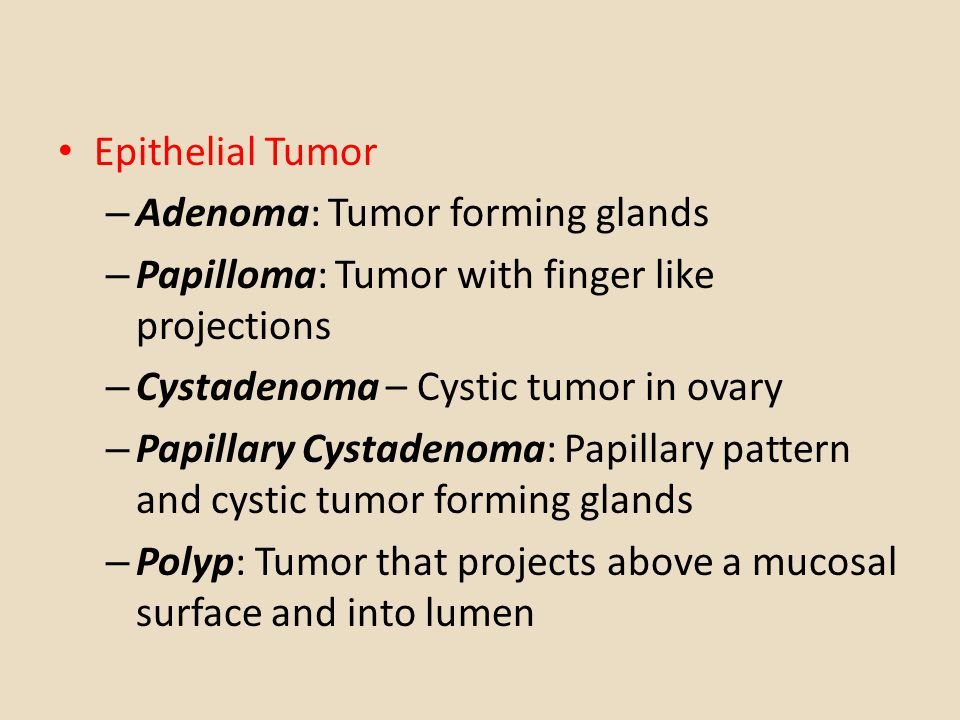 difference of papilloma and polyp