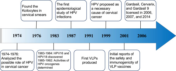 prophylactic human papillomavirus vaccination in head and neck indications and future perspectives