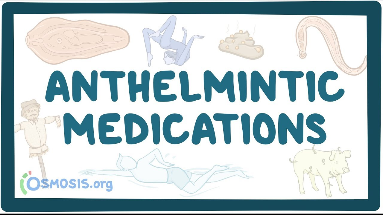 anthelmintic infection definition
