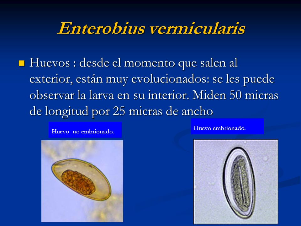 Atlas-de-Parasitologia punctultau.ro - PDF Free Download