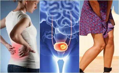 can the hpv virus cause bladder cancer