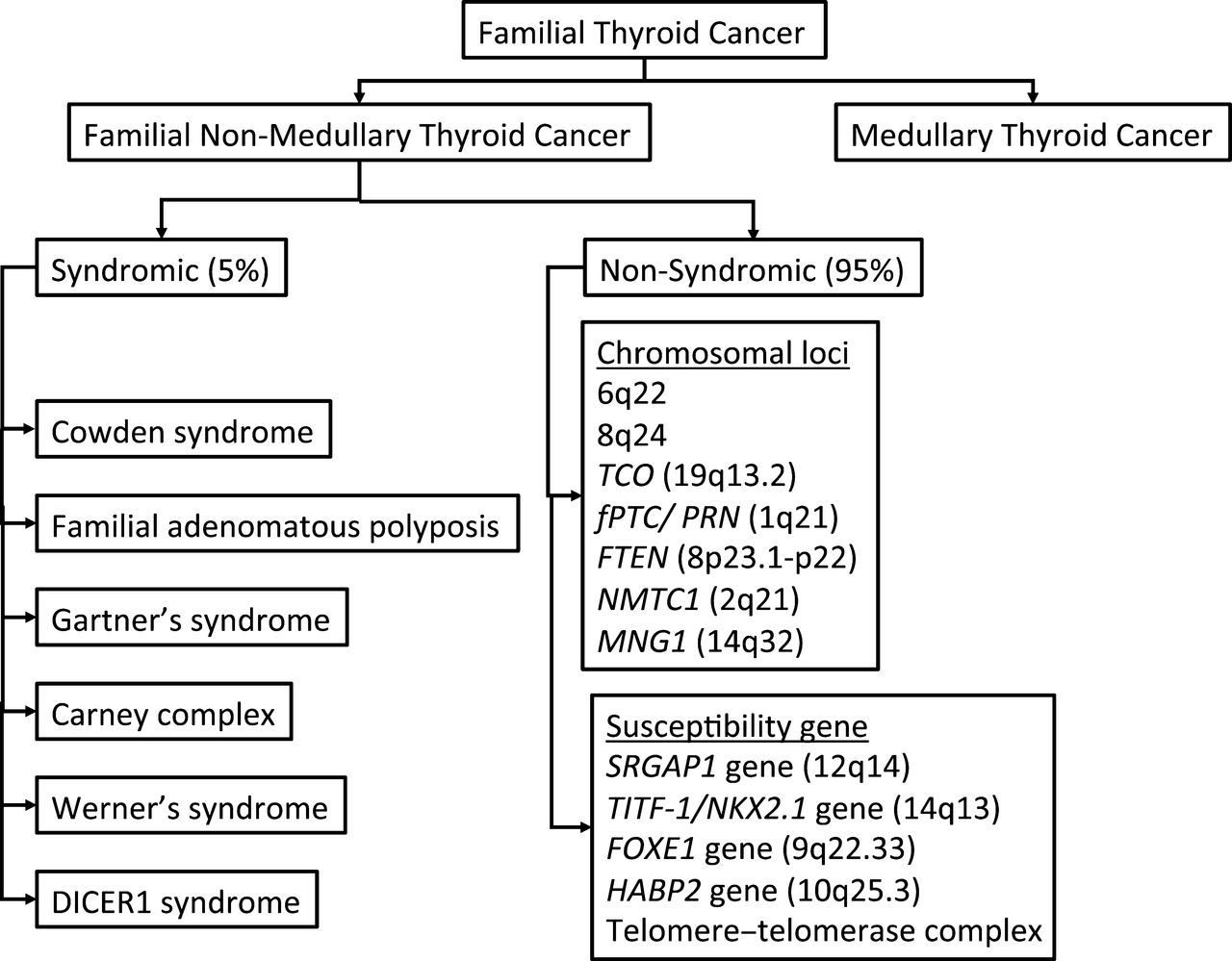 papillary thyroid cancer genetic syndrome testicular cancer what is it