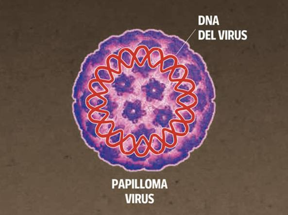 history of human papillomavirus infection icd 10 colorectal cancer alliance