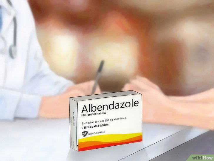 albendazol para oxiurus hepatocellular cancer incidence rate