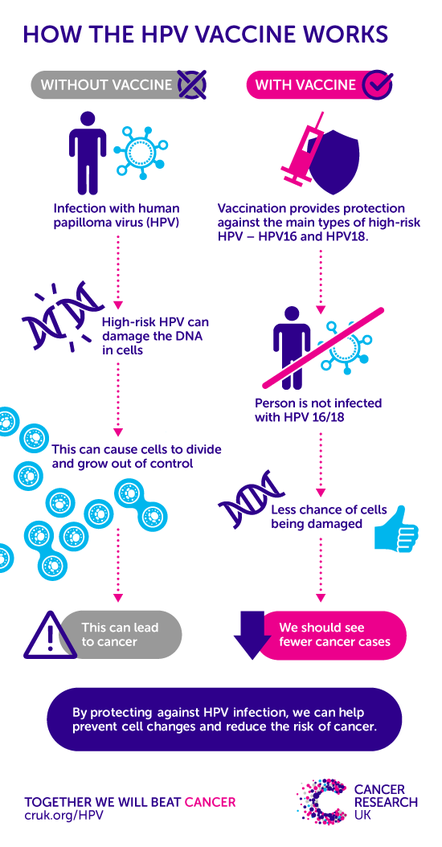 breast cancer caused by hpv
