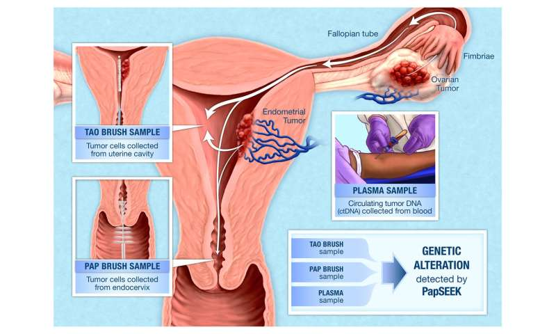 cervical cancer genetic