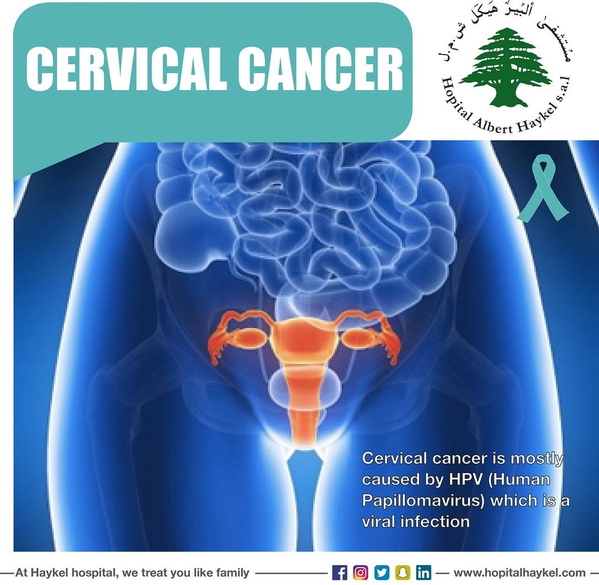 does hpv cause bone cancer hpv infection genital warts