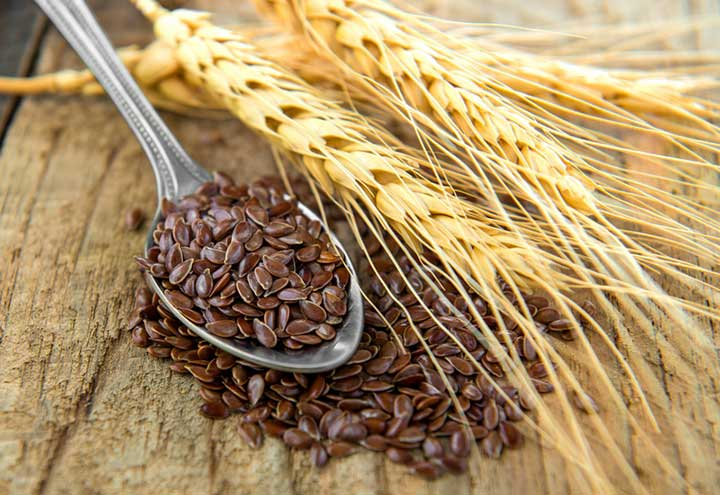 endometrial cancer flaxseed