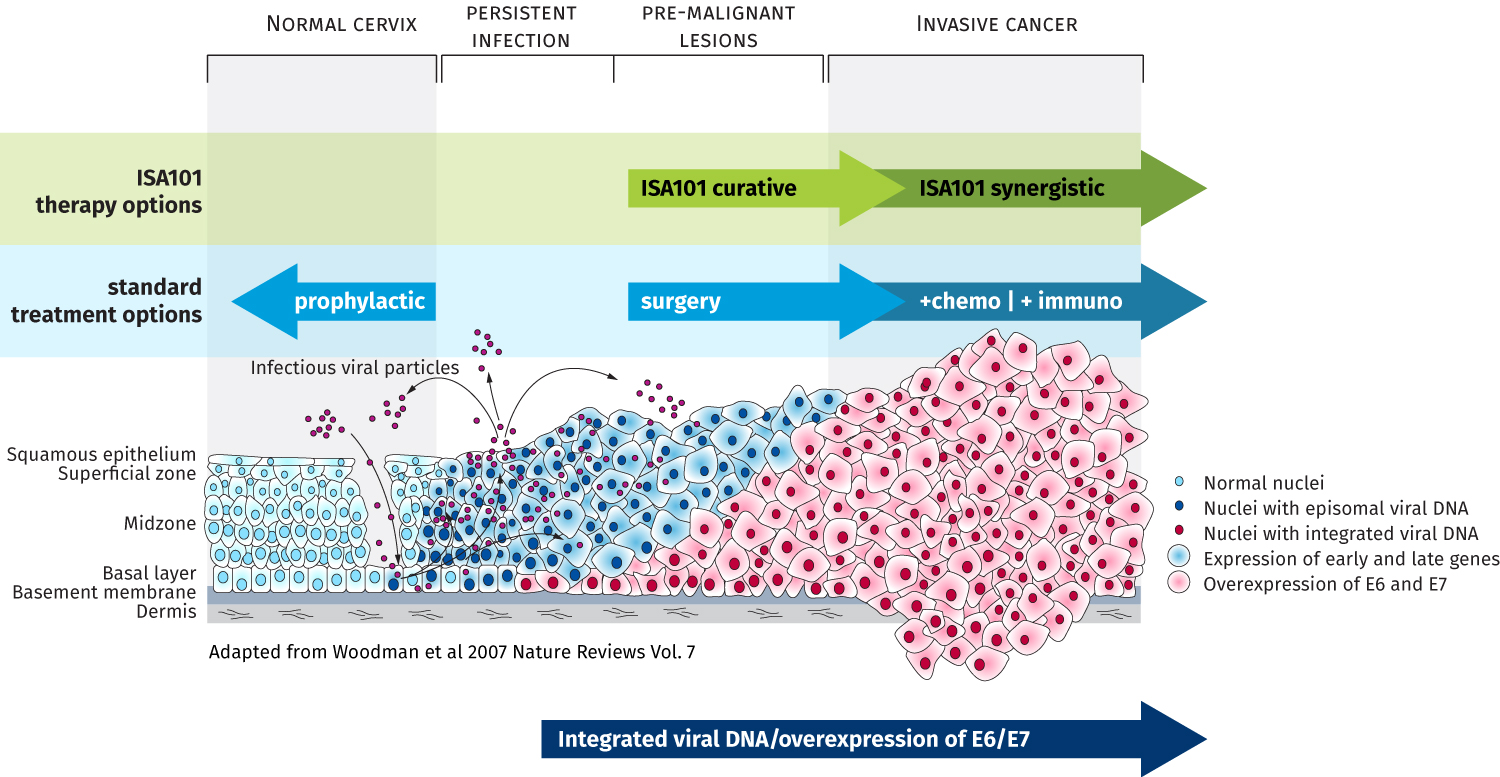 hpv cancer review