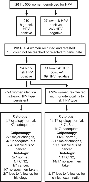 hpv high low risk types inverted papilloma of nose