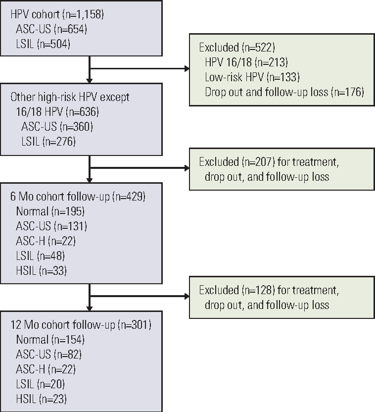 hpv high risk not-16/18 treatment