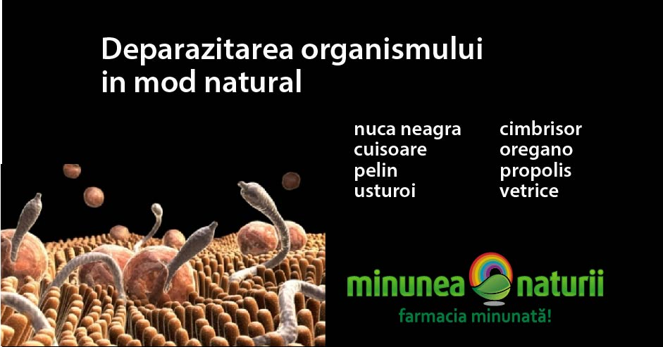 deparazitare intestinala adulti