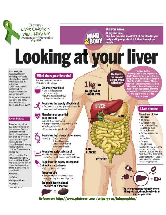 hepatic cancer fun facts